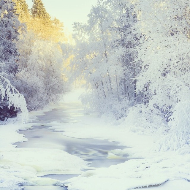 #winter #river