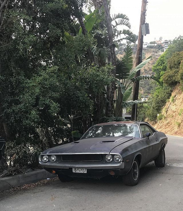2 weeks ago. Miss this place.......#losangeles #california #laurelcanyon #cars #dodge #challenger